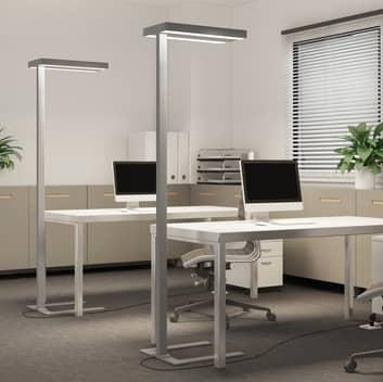 Arcchio Bertram LED-Büro-Stehlampe, Sensor CCT