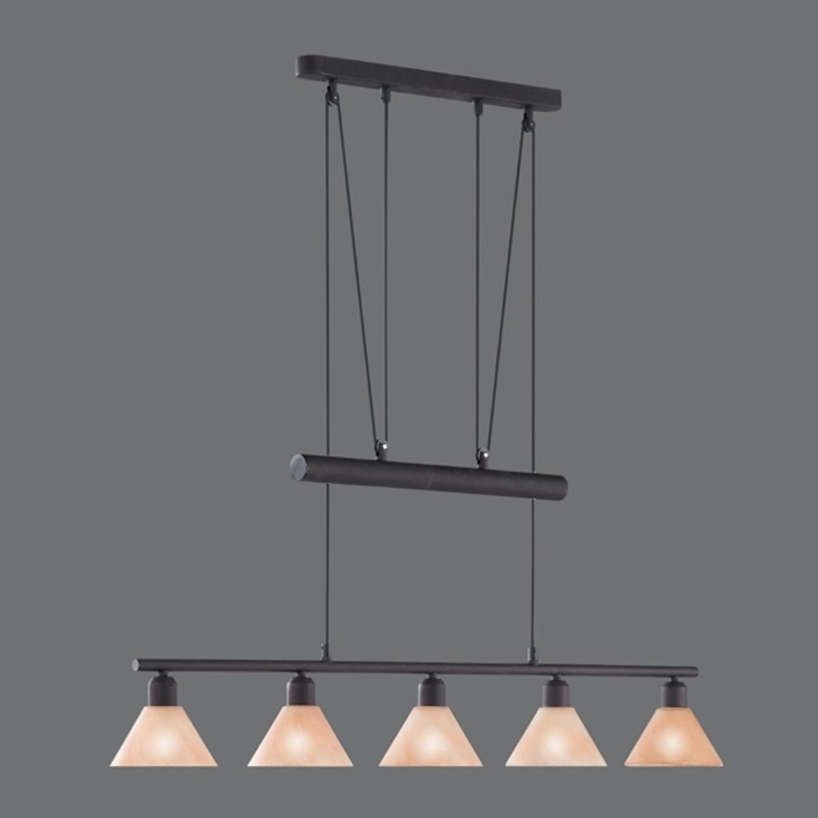 In hoogte verstelbare hanglamp Zug, 5-lichts