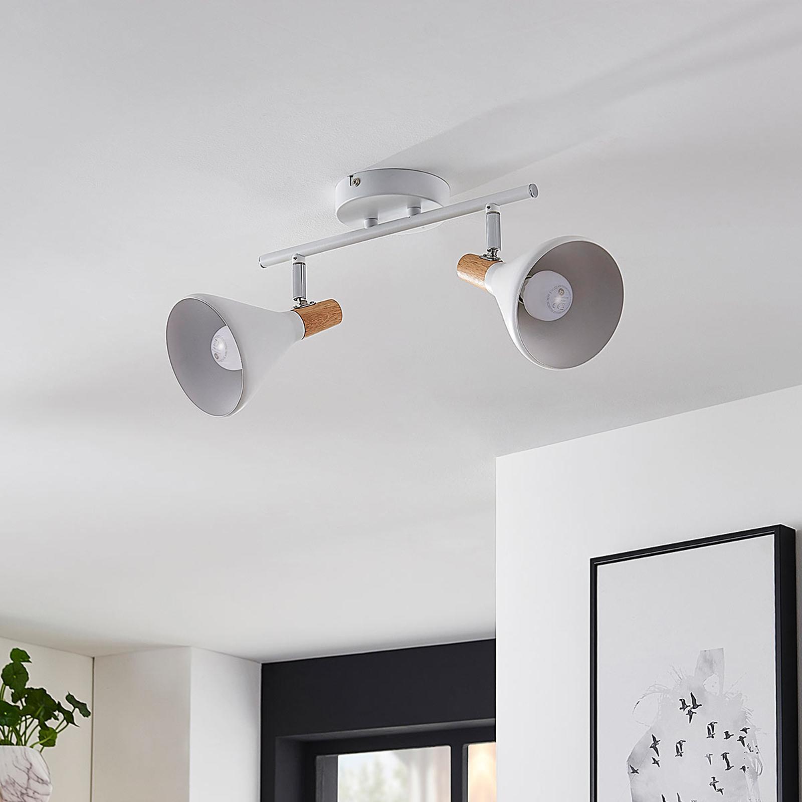 Plafonnier LED Arina à 2 lampes