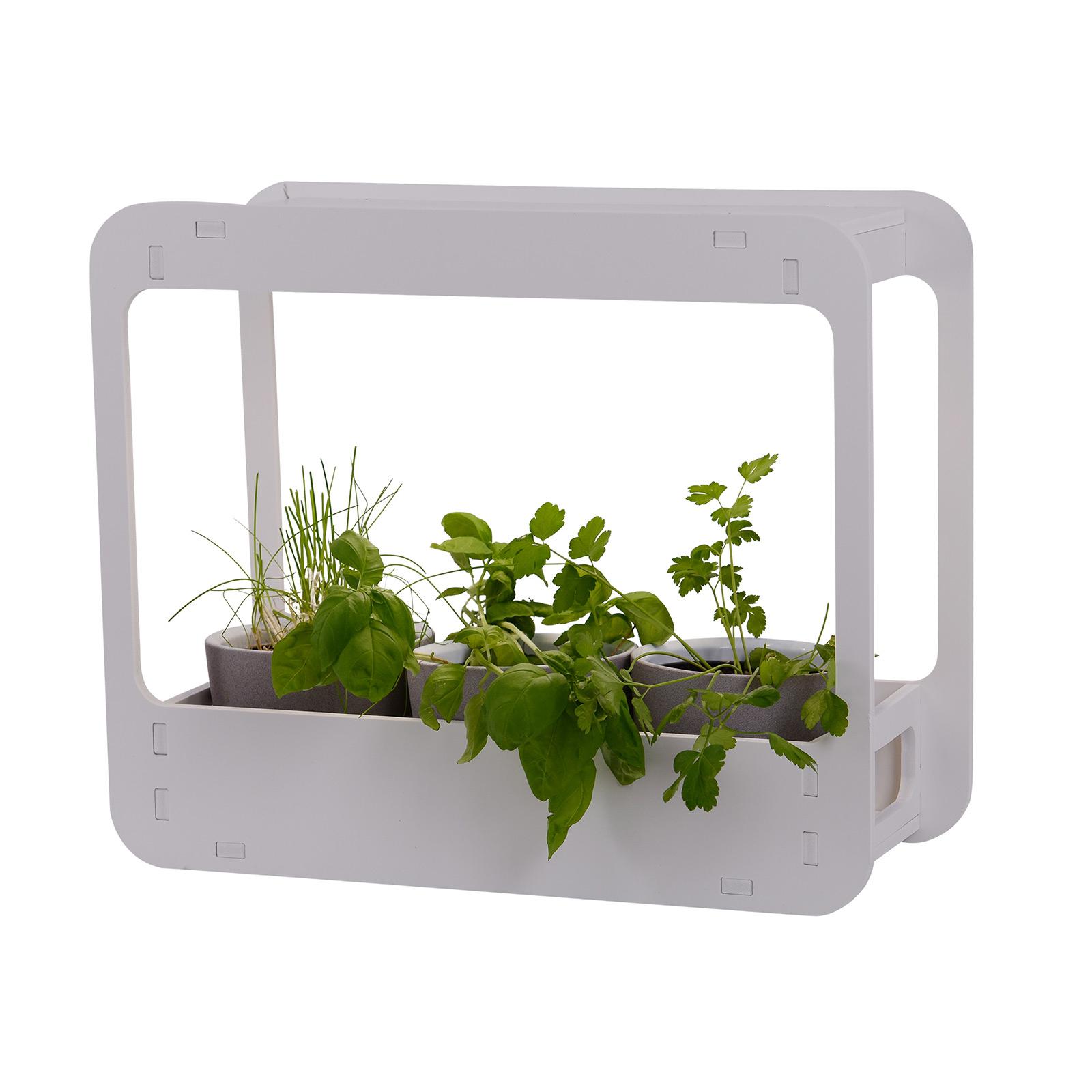 LED-Pflanzenleuchte Garden mit Timer, 48 cm