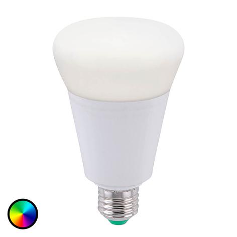 LED-pære LOLA E27 14W, RGB, 1100 lumen, dimbar