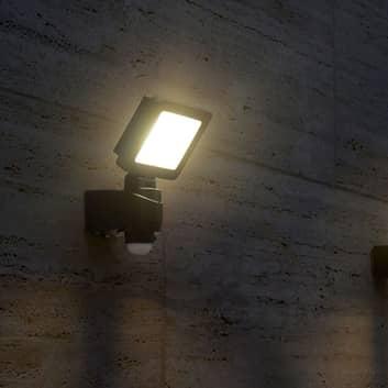 Kraftig LED udendørsspot Nebraska med sensor