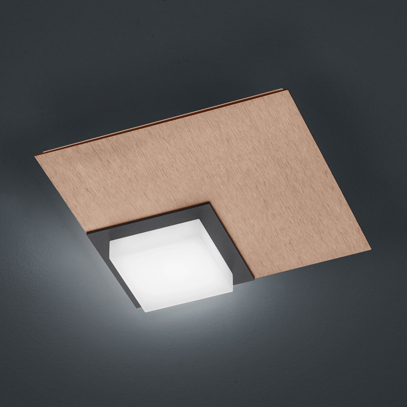 BANKAMP Quadro plafonnier LED 8W or rose