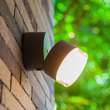 Dropsi udendørs LED-væglampe, RGBW, smart styring