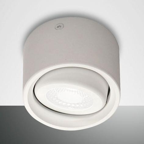 Foco LED de techo Anzio con cabezal orientable
