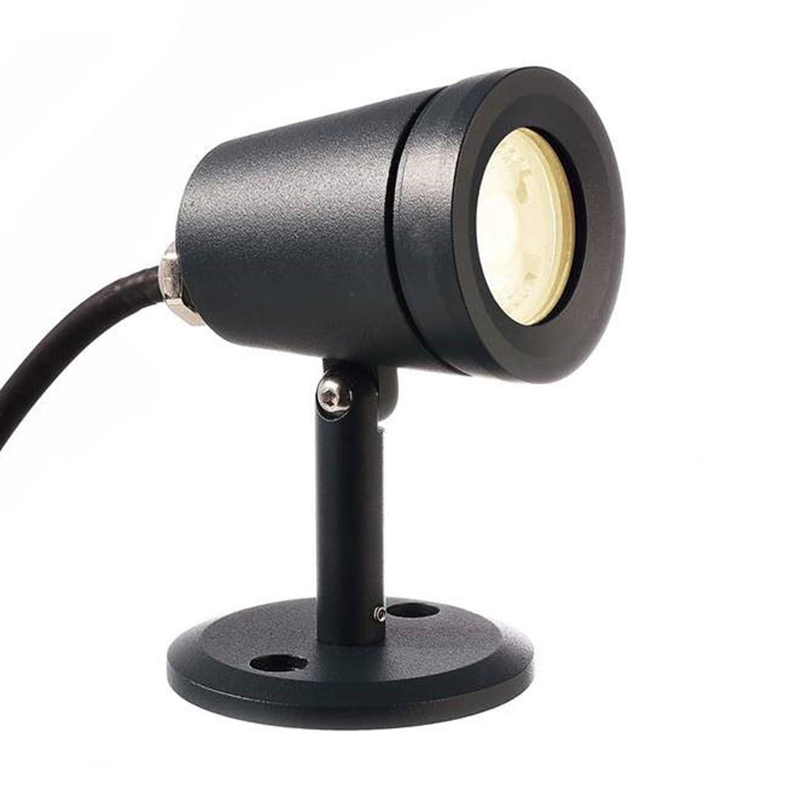 LED-buitenspot Colt, warmwit, draaibaar, 4 W