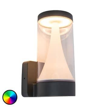 WiZ Spica udendørs LED-væglampe