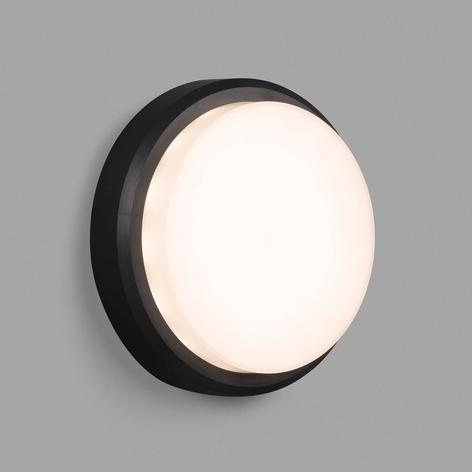 Applique LED Tom XL, IK10
