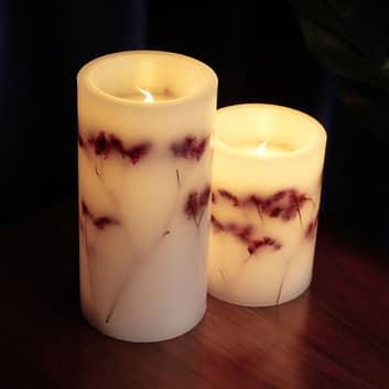 Pauleen Shiny Bloom Candle LED-mignon 2er-sett