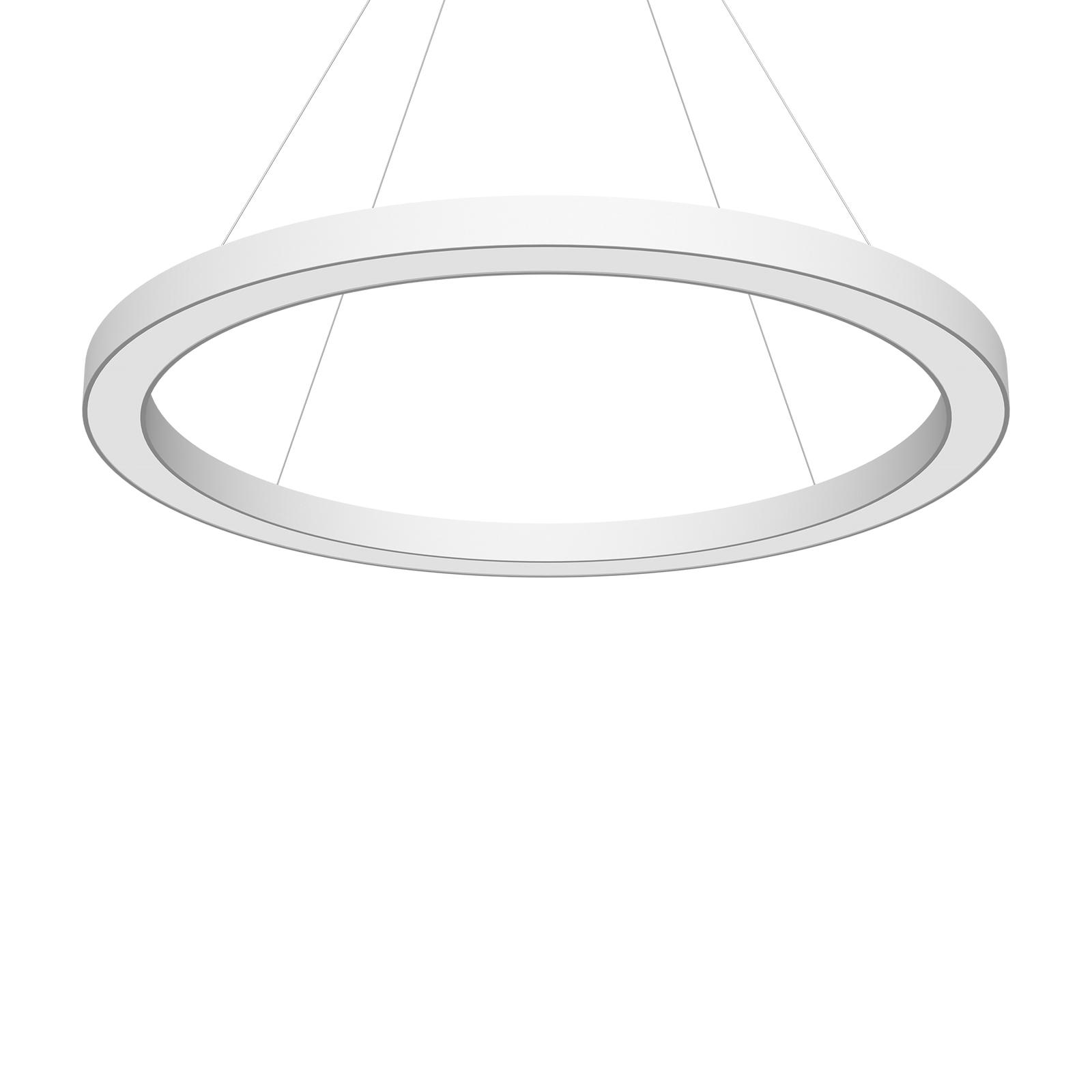 LED-Pendel Cerchio DALI 940 234,5W up/down Ø120cm