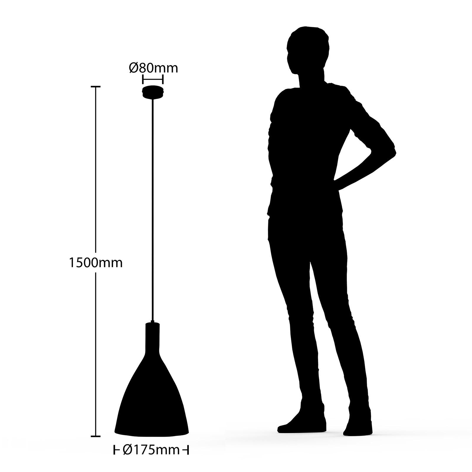 Arcchio Arthuria lampa wisząca, 1-punktowa, czarna