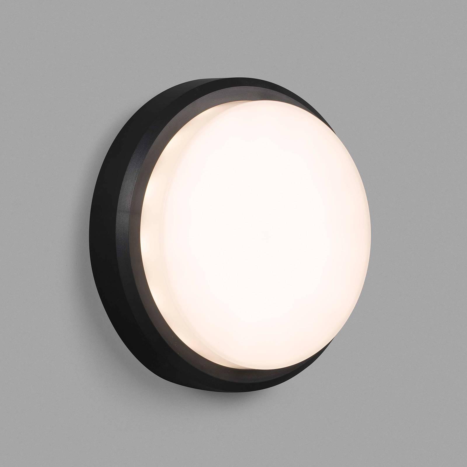 LED buitenwandlamp Tom XL, IK10, donkergrijs/wit