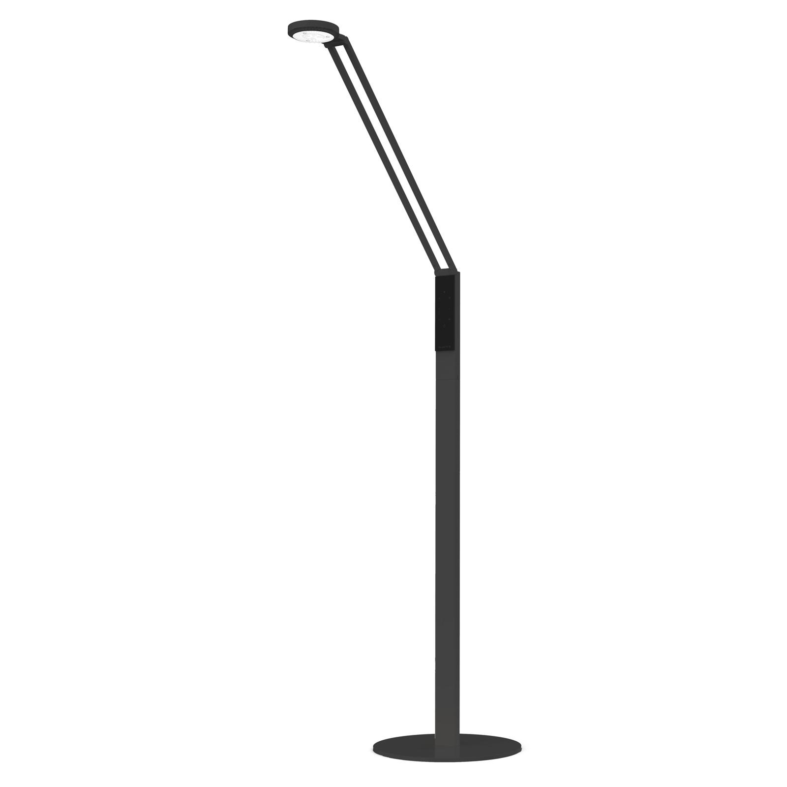 Luctra Floor Radial LED-Stehleuchte schwarz