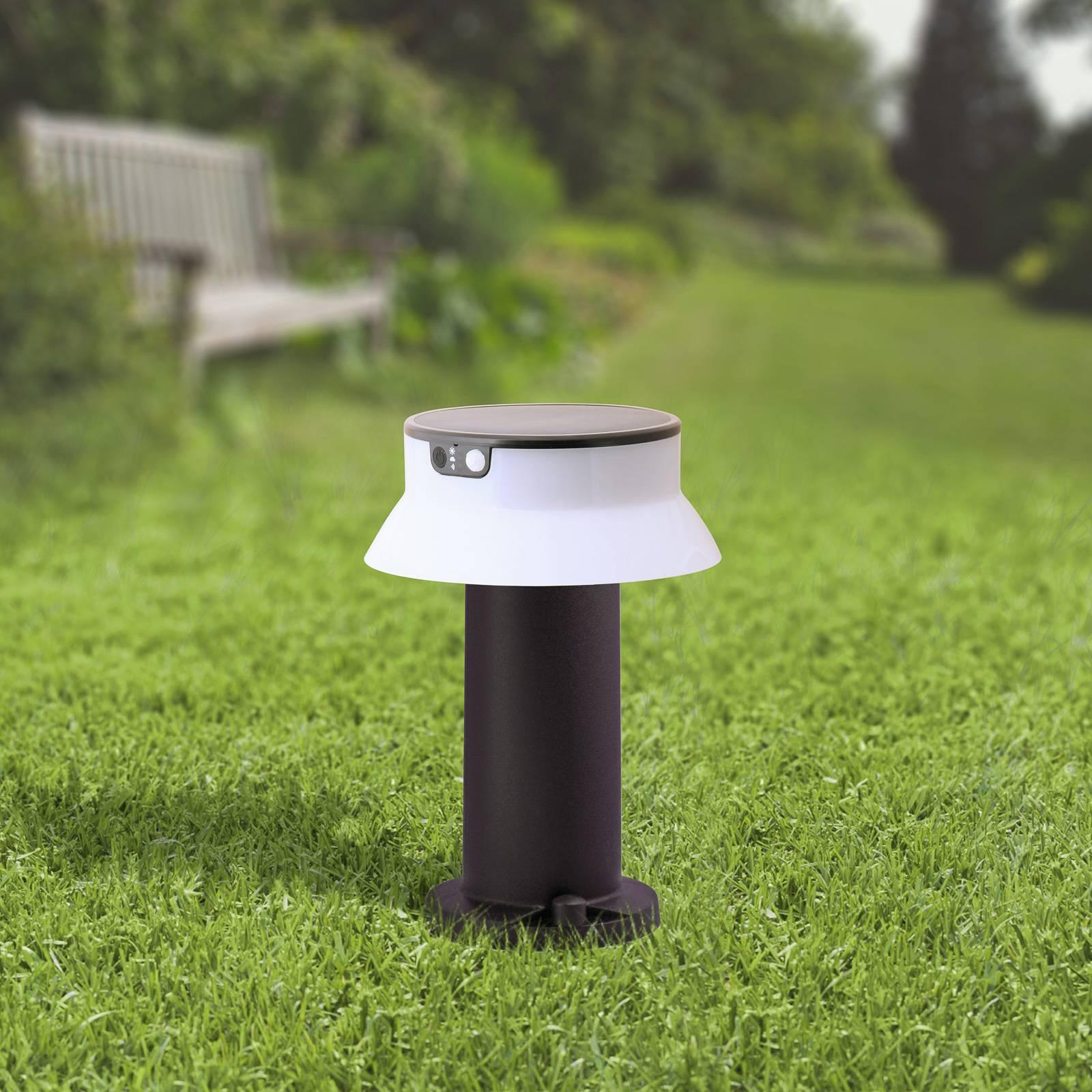 LED-Solarleuchte Felice schwarz CCT Höhe 33 cm