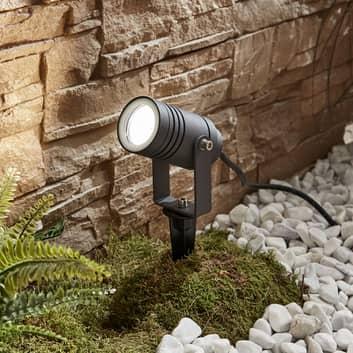 Udendørsspot Galina med jordspyd, mørkegrå 10cm