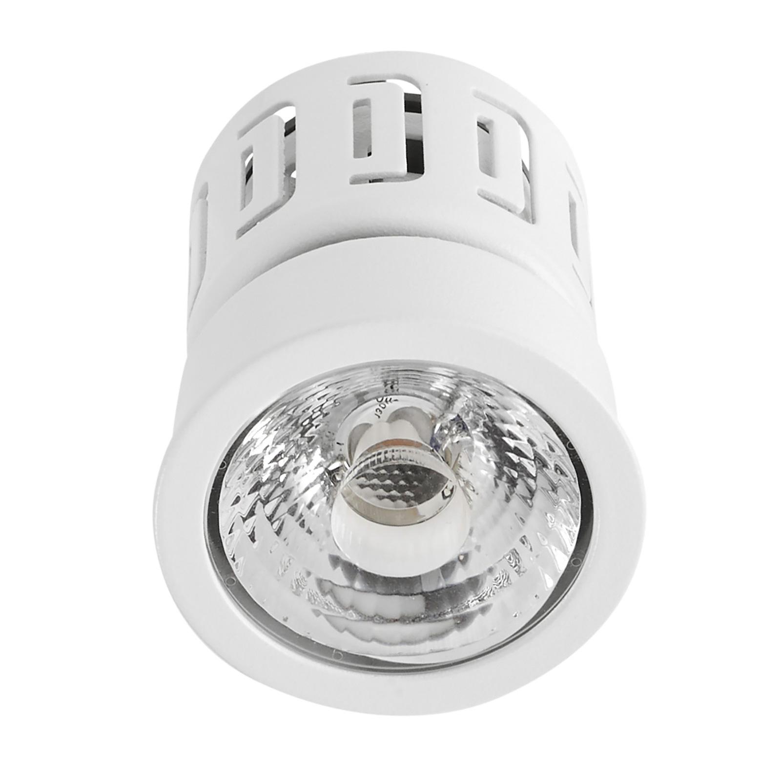 LEDS-C4 IN LED-Modul Multidir Evo S, 2.700 K
