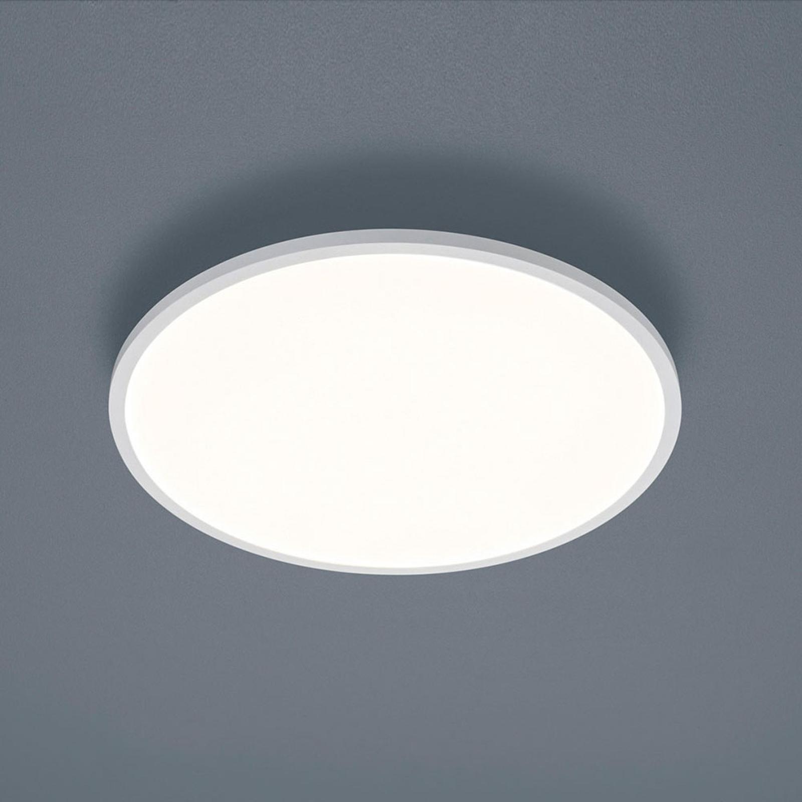 Helestra Rack lampa sufitowa LED okrągła biała