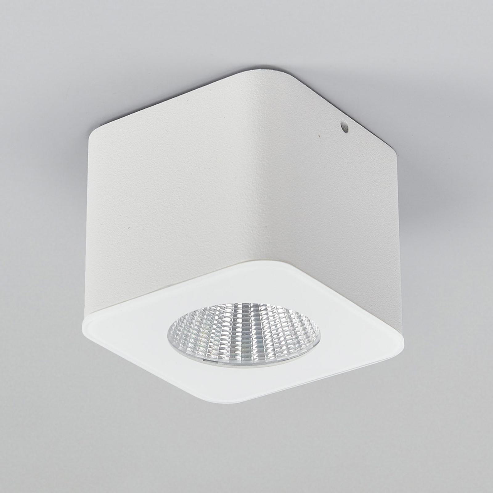 Helestra Oso LED-Deckenspot, eckig, weiß matt