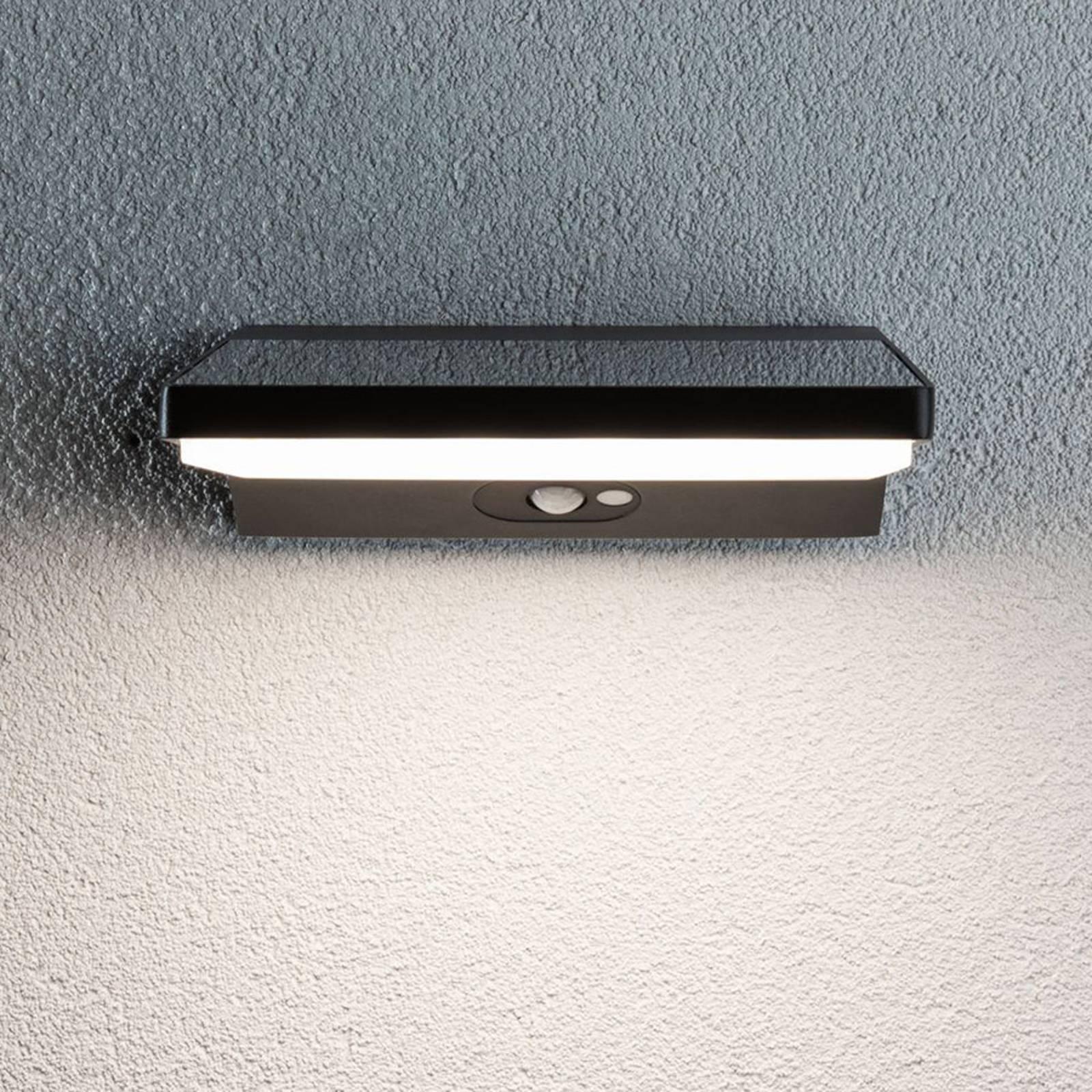 Paulmann 94334 applique solaire LED, 25 cm