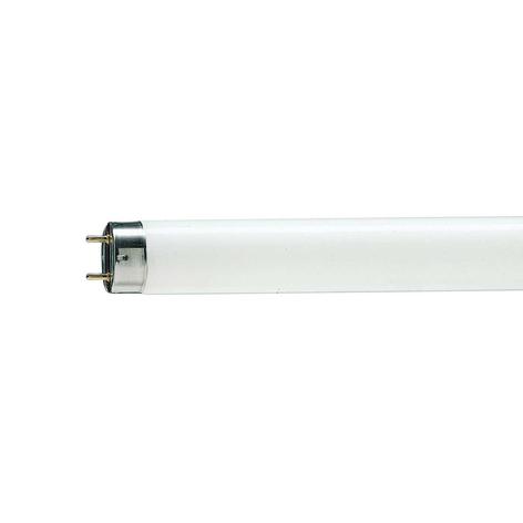 Amp. fluoresc. MASTER TL-D Graphica 950 G13 T8 36W