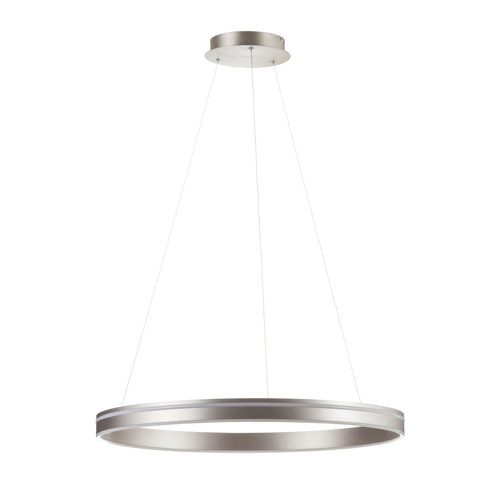Paul Neuhaus Q-VITO LED hanglamp 79cm staal