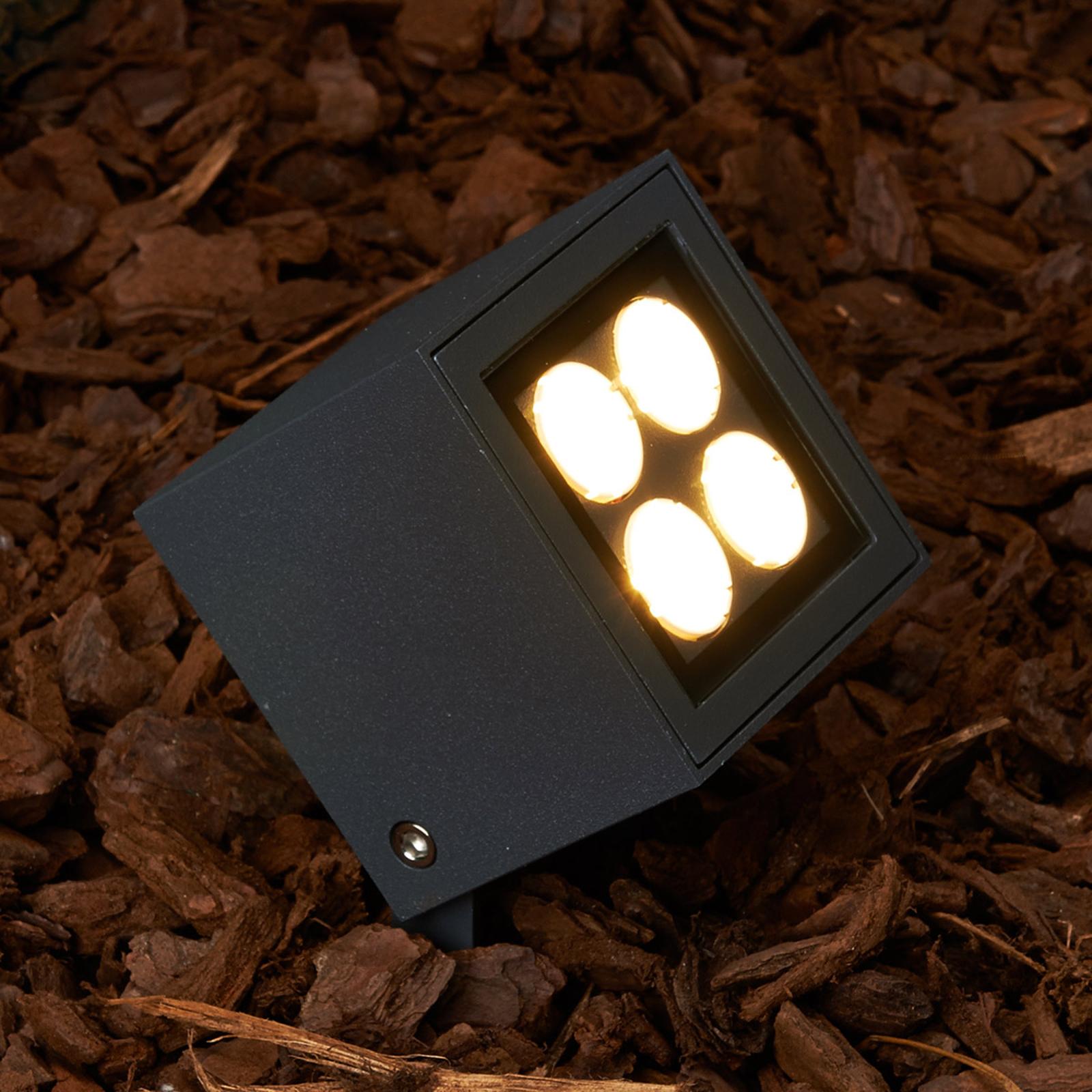Erdspießstrahler Charlie mit LED für außen, IP65