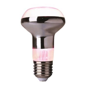 LED reflektor rostliny E27 R63 4W vyzařující 60°