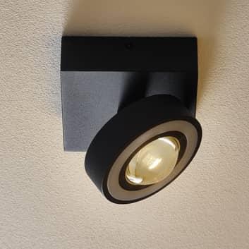 Paul Neuhaus Q-MIA LED-loftlampe, antracit