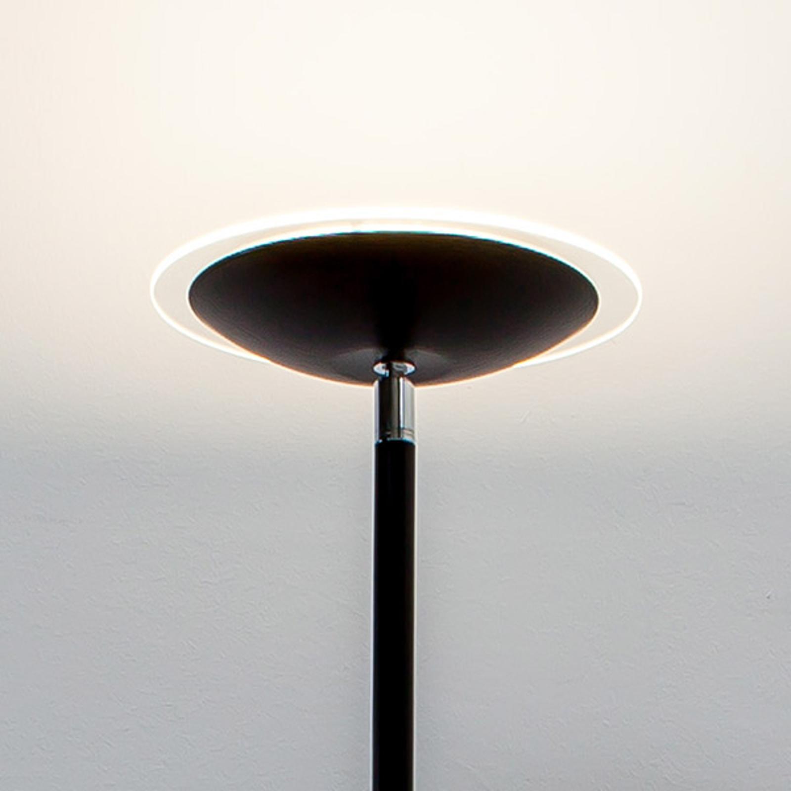 Zwarte LED uplighter Malea