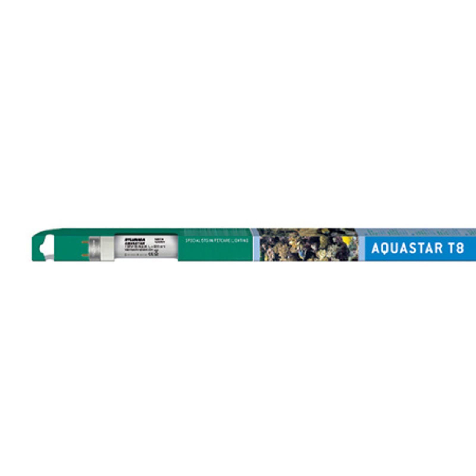 Lampadina per usi speciali Aquastar T8 G13 25W