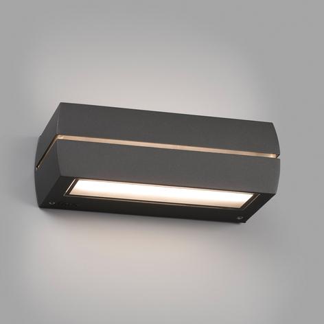 LED buitenwandlamp Dragma