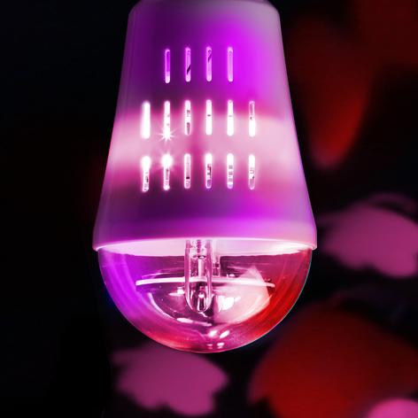 E27 4W LED bombilla decorativa