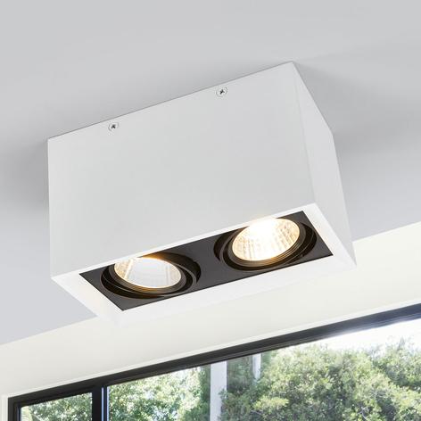 Dvouzdrojové LED stropní svítidlo Loreen v bílé