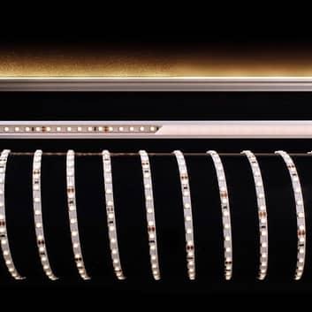 Fleksibel LED-stripe, 40 W, 500x0,5x0,3 cm