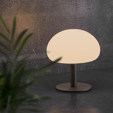 LED-bordlampe Sponge table med 21,5 cm batteri