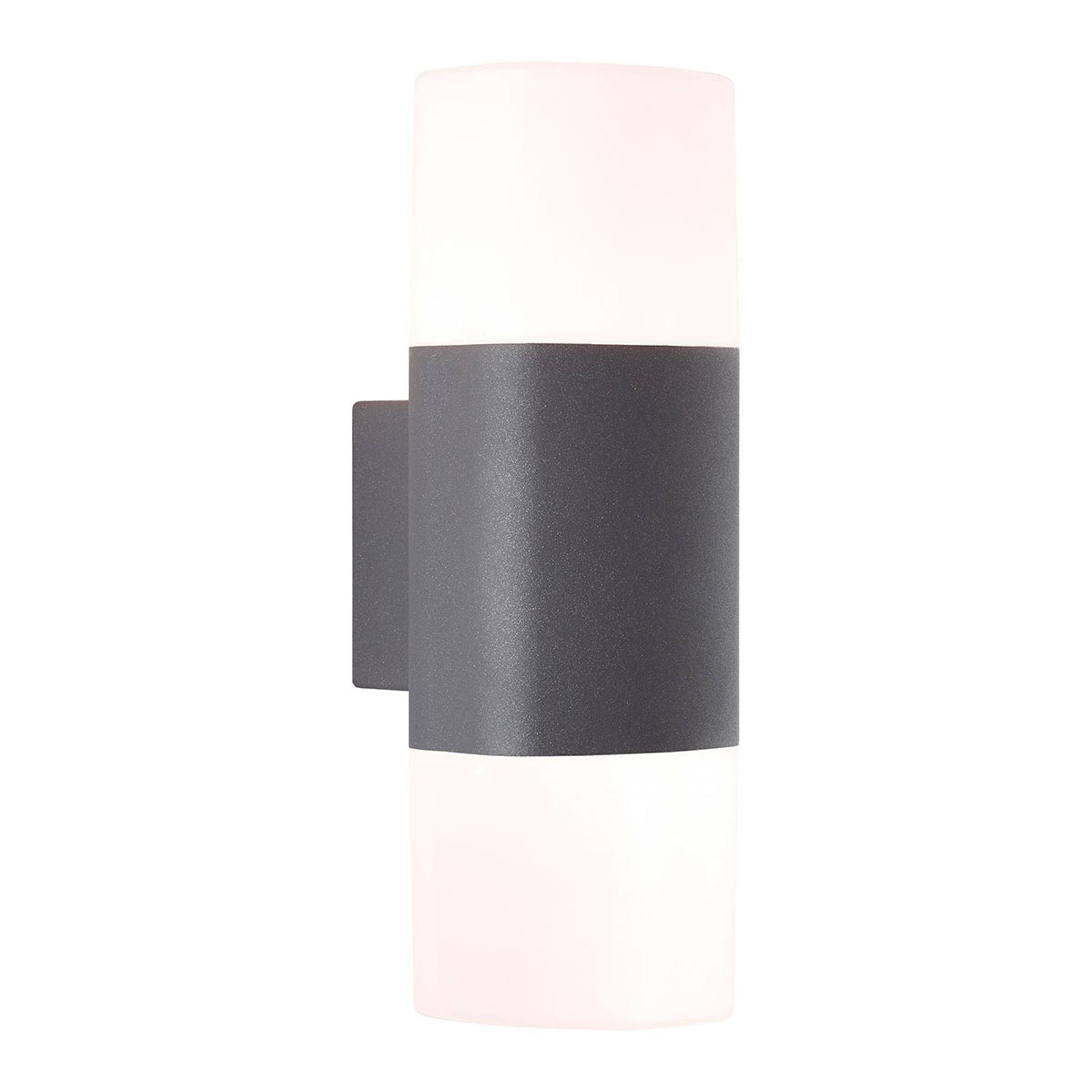 AEG Farlay LED buitenwandlamp 2-lamps