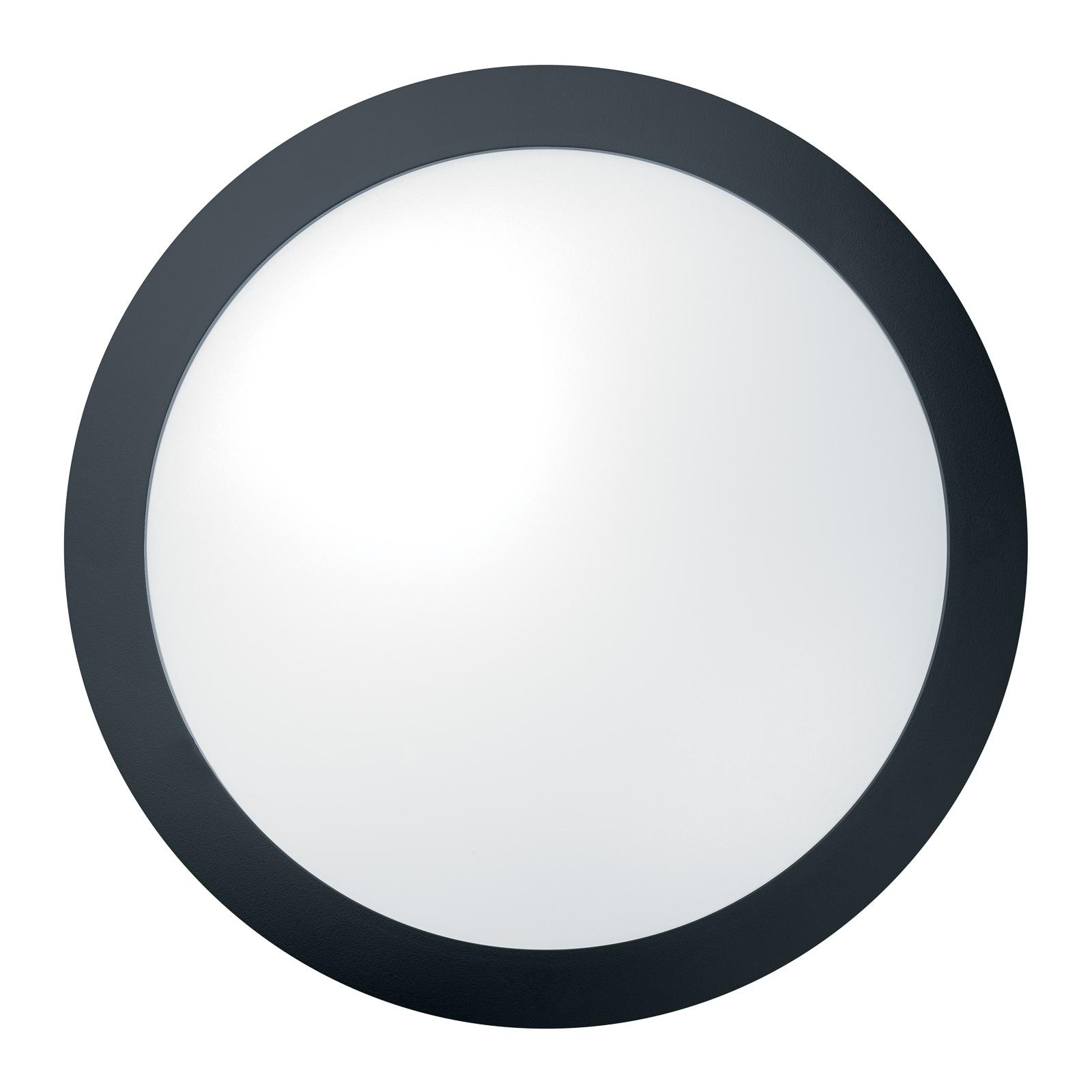 THORNeco Tom Vario Wandleuchte 20W Sensor schwarz
