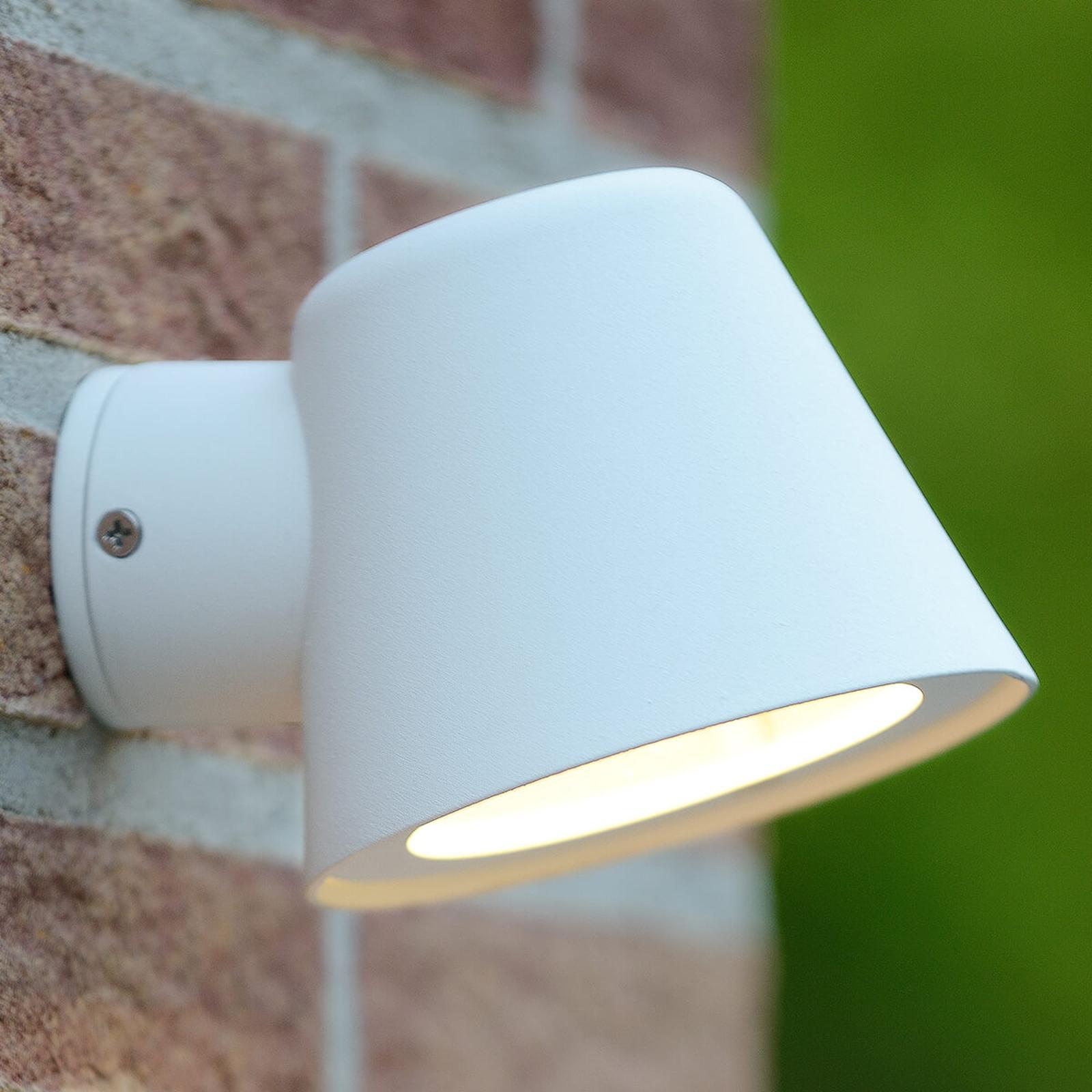 Dingo - LED-vägglampa för utomhusbruk