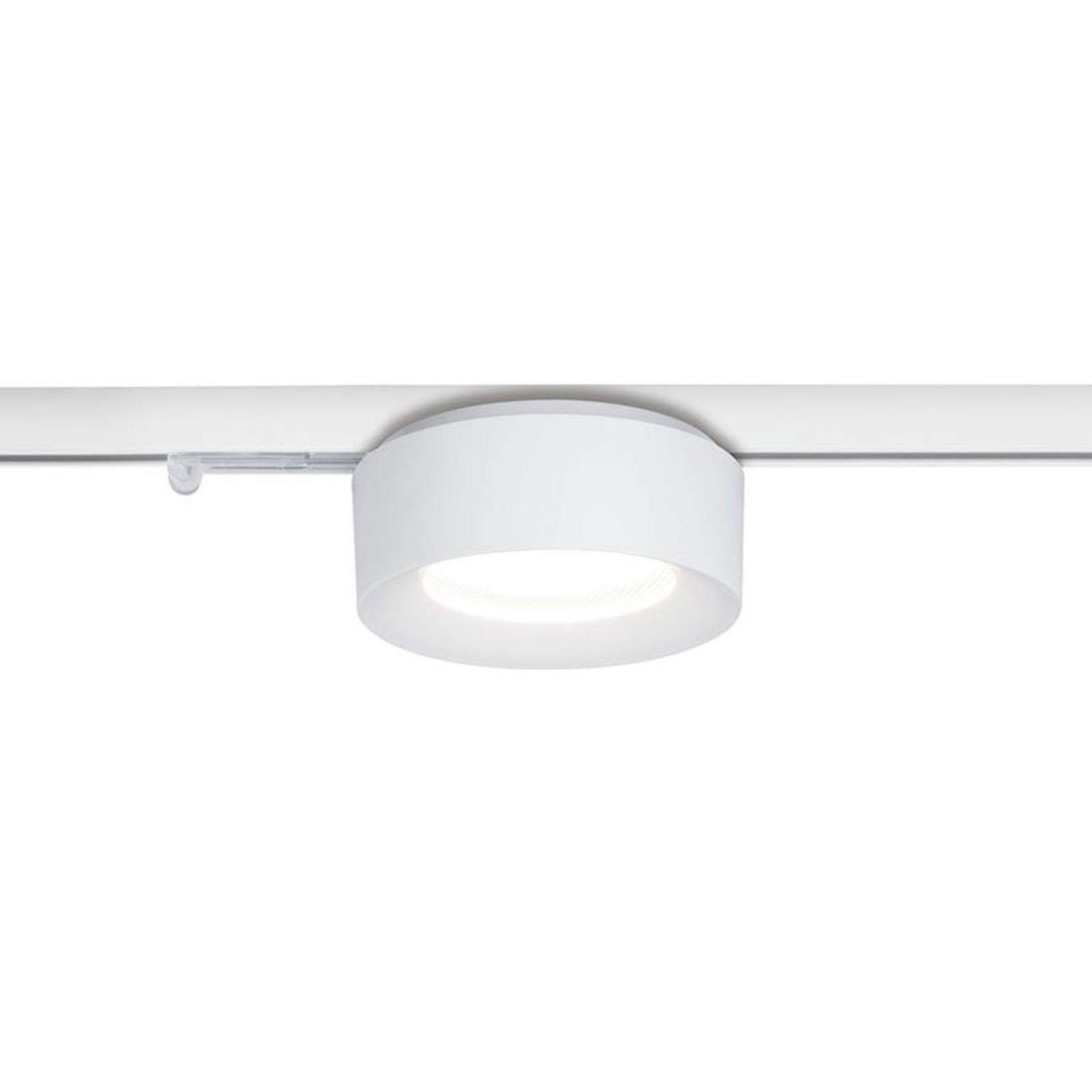 Paulmann NanoRail Cavar LED downlight, wit