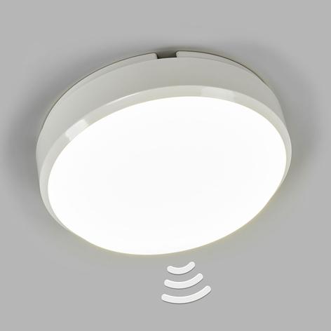 Runda LED-taklampan Bulkhead med sensor, IP54
