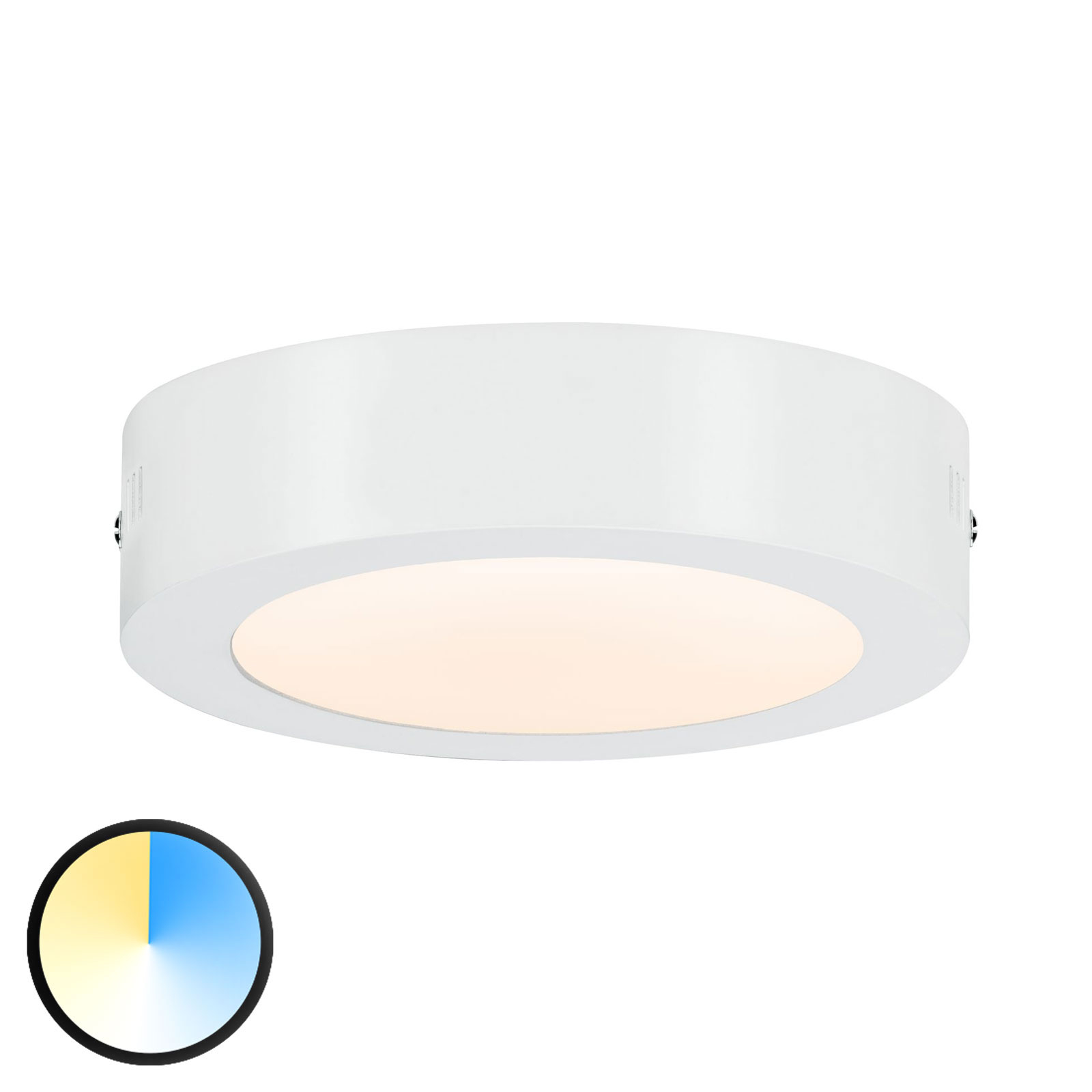 Paulmann Carpo lampa sufitowa LED biała 17cm