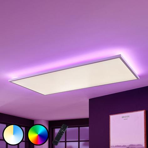 LED-Panel Brenda CCT Fernbedienung 59,5 x 119,5cm