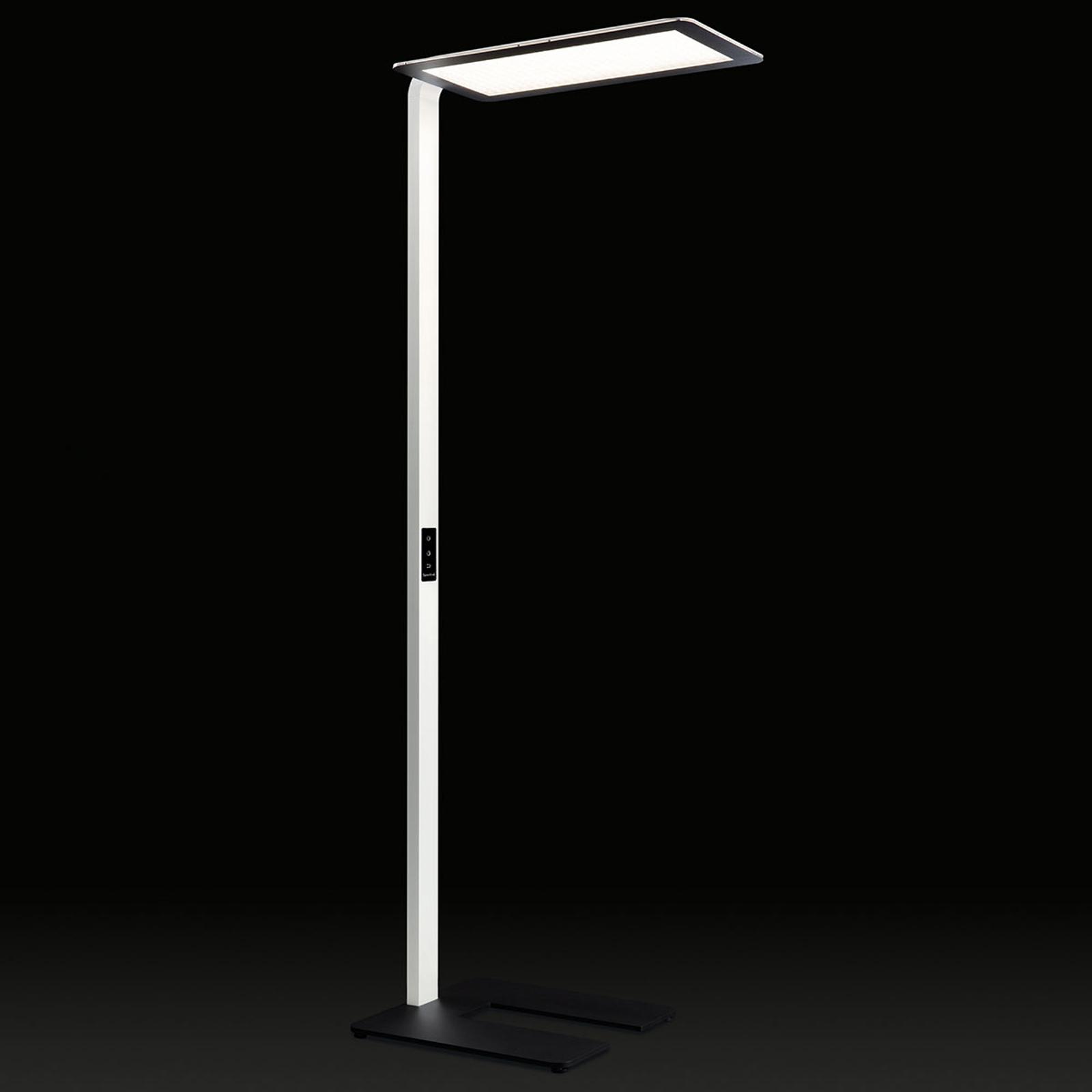 Dome-S-KG lampa stojąca LED dla biur