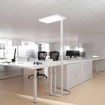 Förstklassig golvlampa med dagsljussensor Luxsense