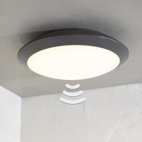 LED-utomhustaklampa Naira, grå, med sensor
