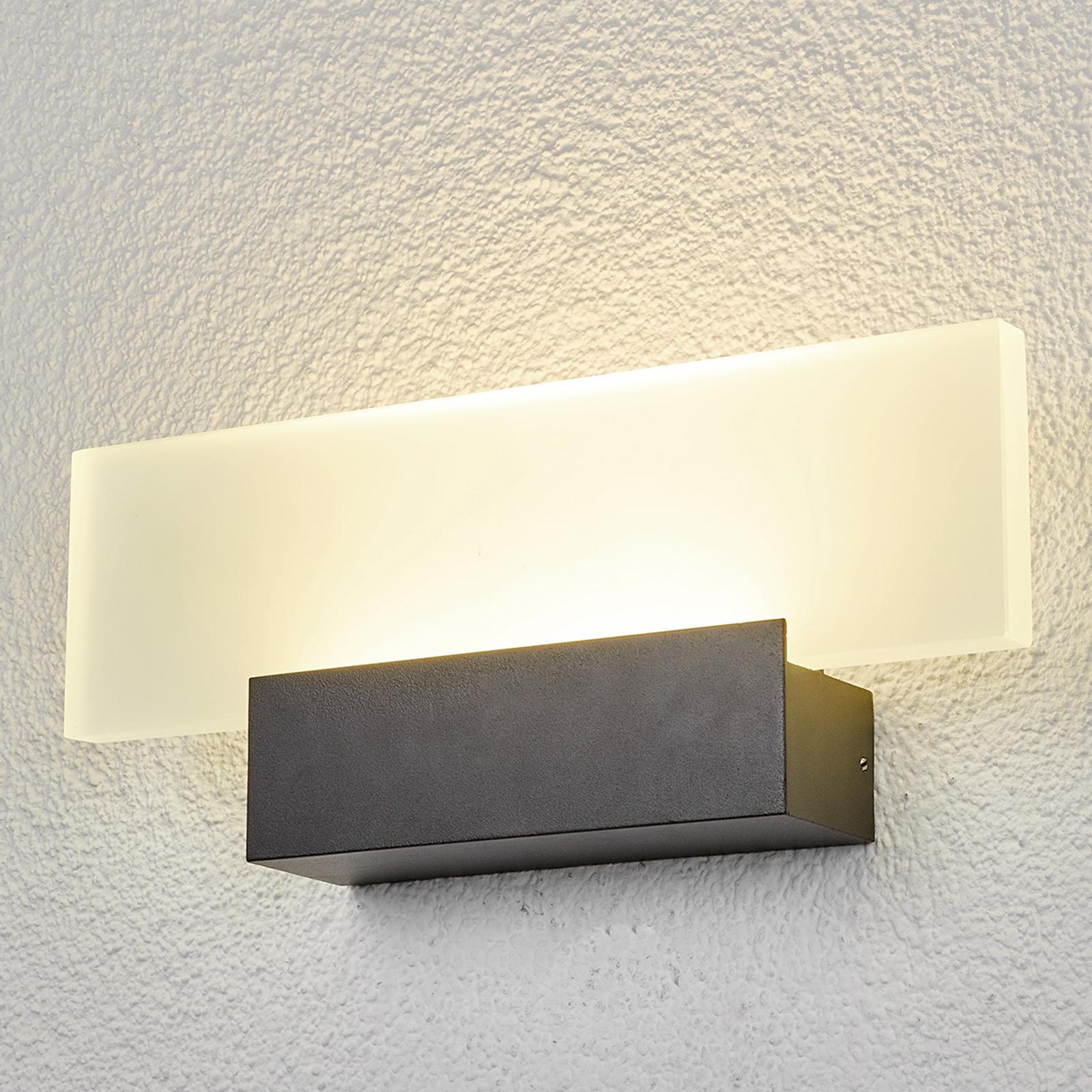Utendørs LED-vegglampe Rieke