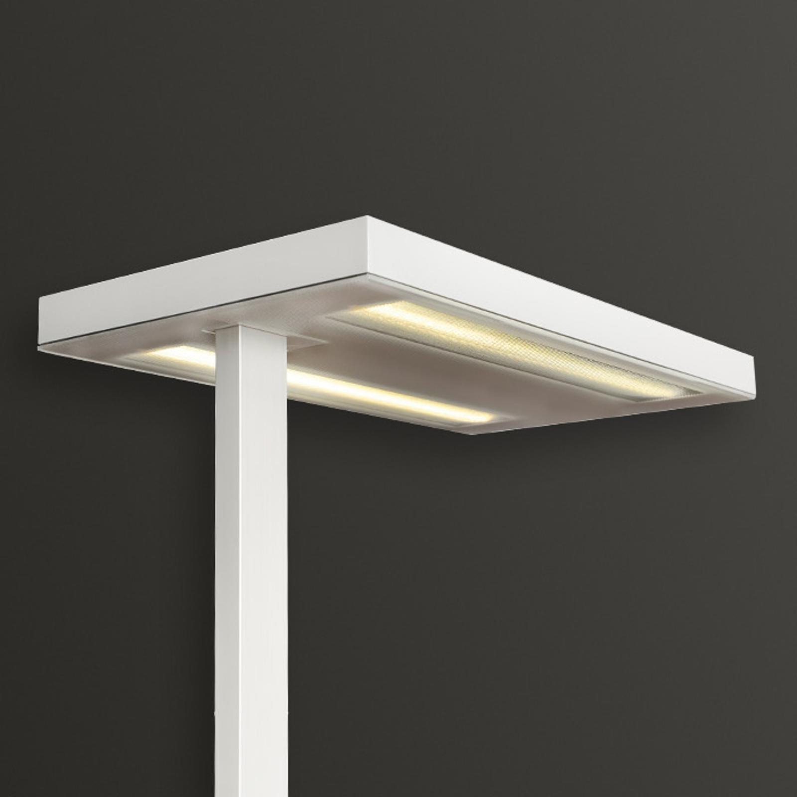 Białą lampa stojąca FREE-F LED 10000 HF 840 CP2