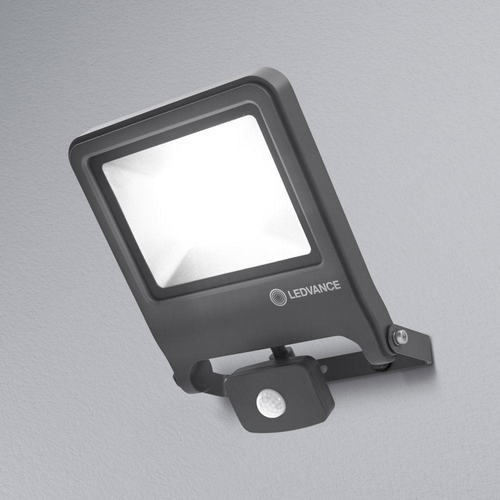 LEDVANCE Endura Floodlight Sensor-LED-Strahler 50W