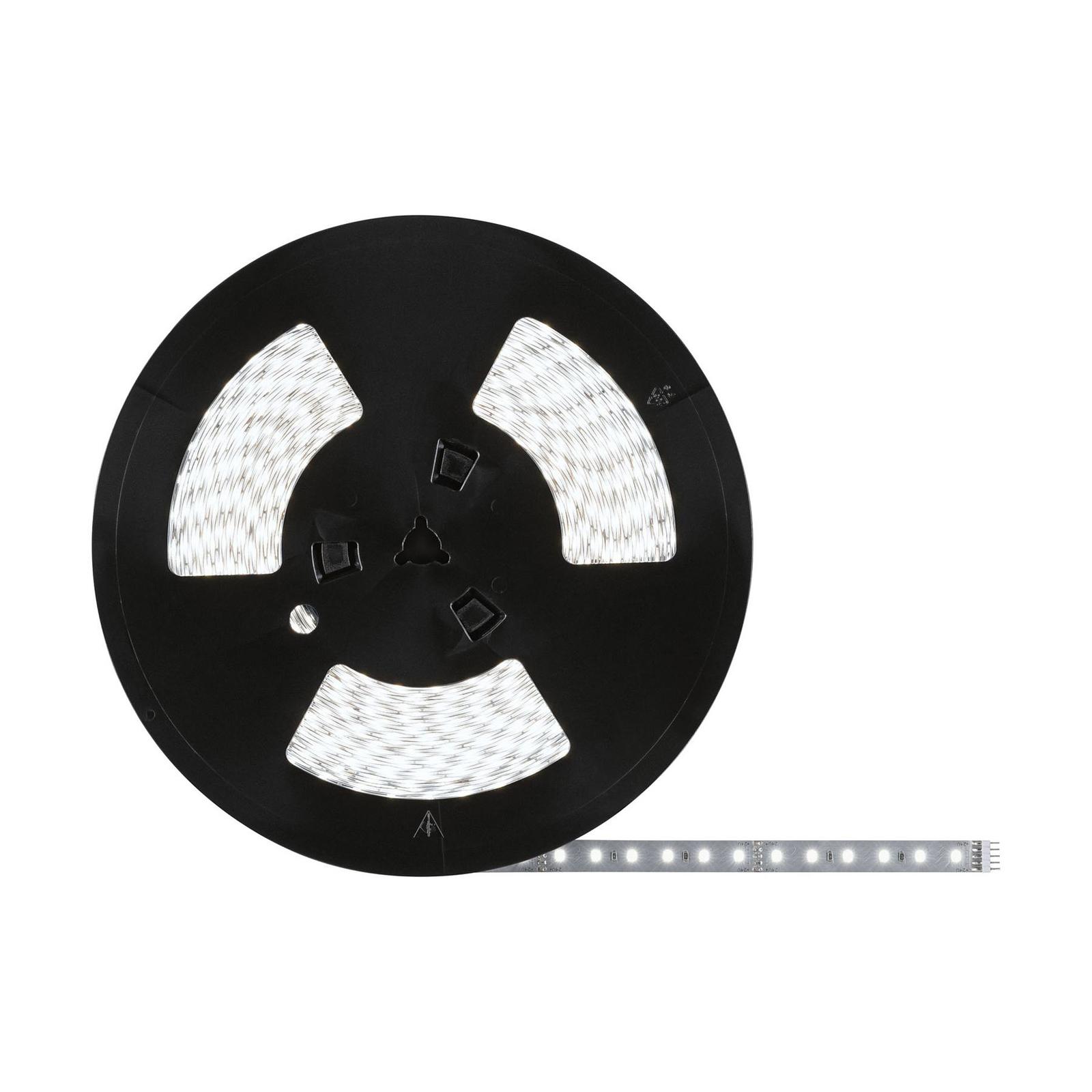Paulmann MaxLED 500 LED-Strip, 20m 6.500 K