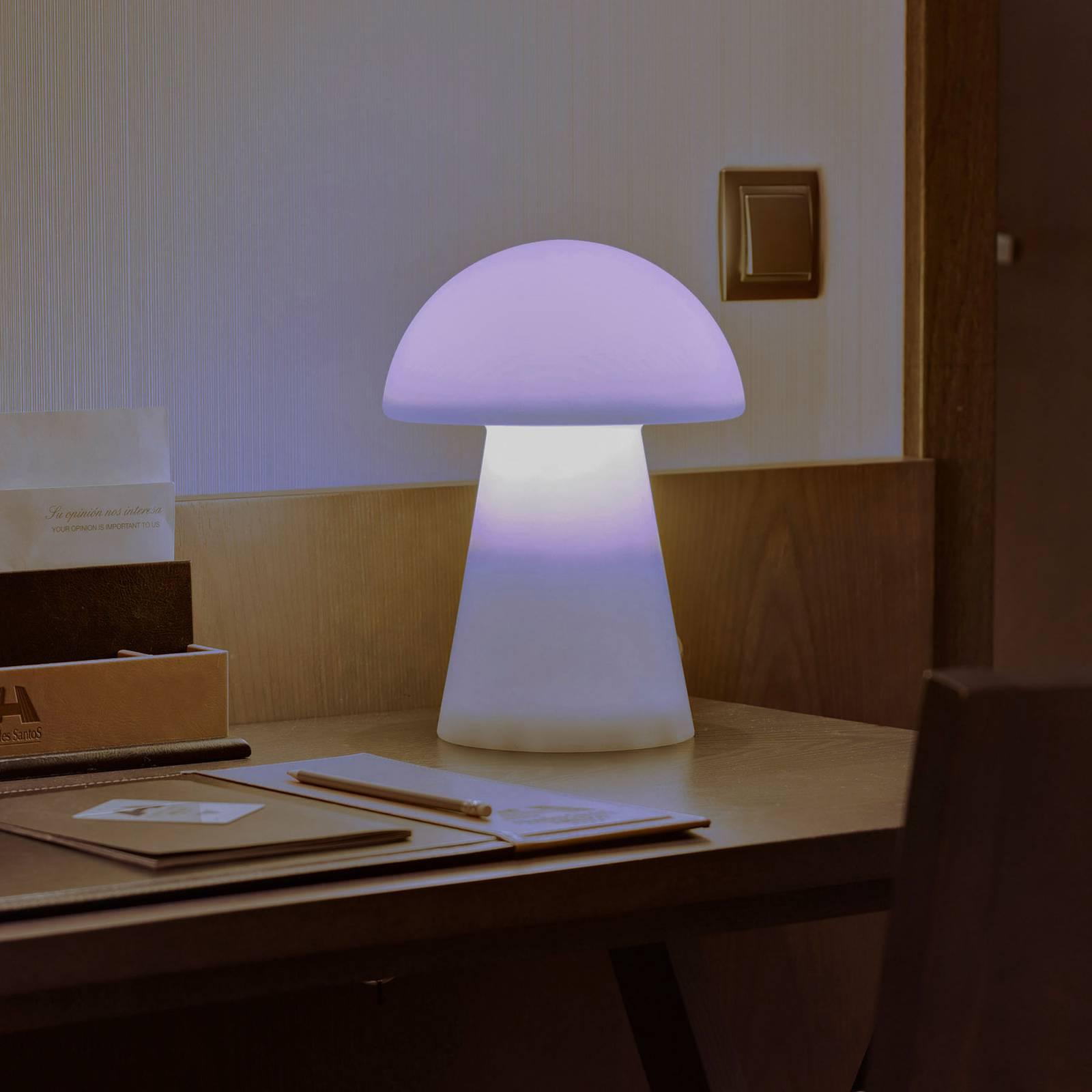 Newgarden Mafalda LED tafellamp met accu
